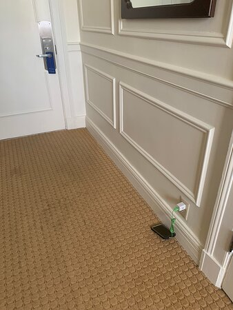 Only useable power outlet, stained carpet