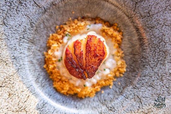 Scallop: Mushroom Risotto   Potato Crumb