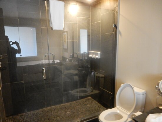 bathroom studio ocean view