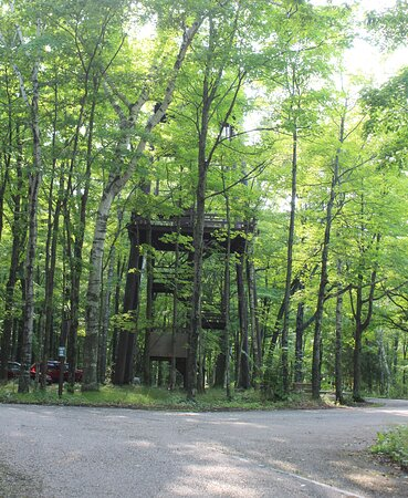 The fire tower.