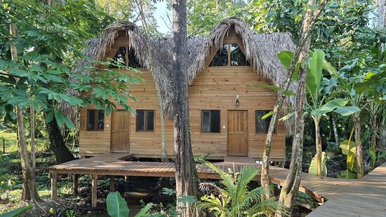 Incredible place in the jungle by the lake...