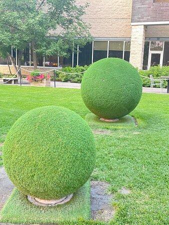 Son parterre décoré de boules de gazon, à vérifier si vrai ou synthétique