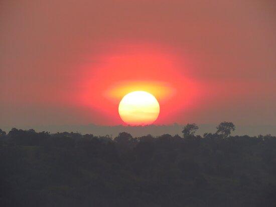 sunrise - Murchison NP
