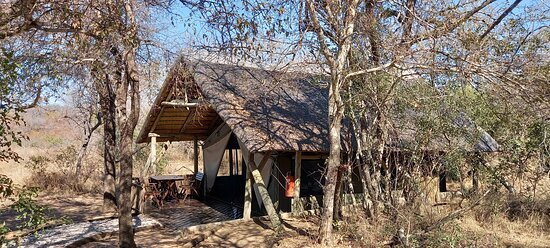 Tent and the bushveld
