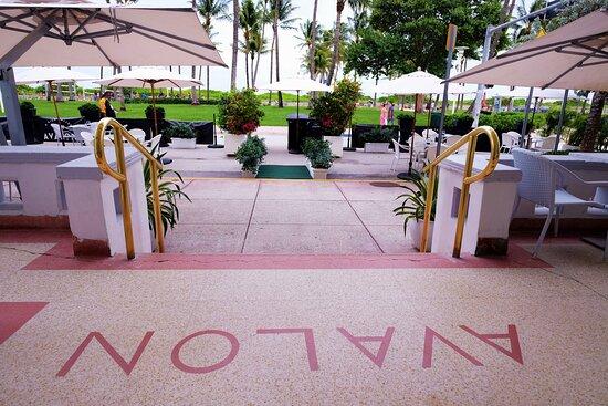 The Avalon prime beachfront location!  – Bild von Avalon Hotel, Miami Beach - Tripadvisor