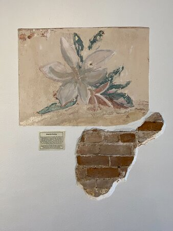 Magnolia painting found when restoring walls of front art gallery.