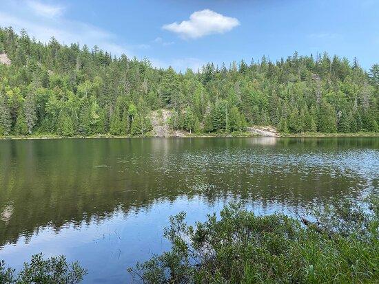 Lake Guy