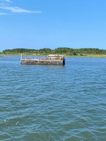 Oyster traps