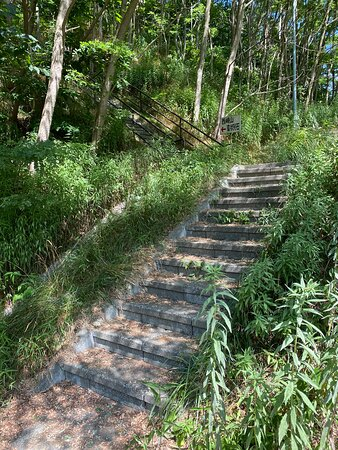 駐車場から階段をを登る