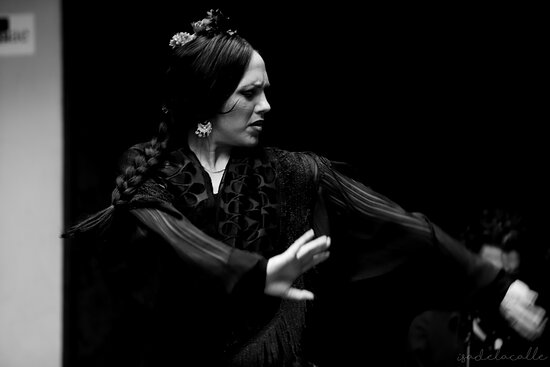 Tablao flamenco Jardines De Zoraya