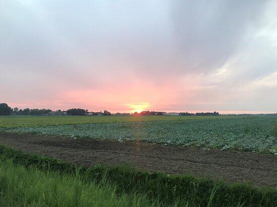 Kraggenburg, Hollanda: Sunset seen from the edge of the campsite
