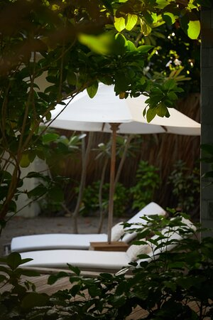 JA Manafaru - Three Bedroom Island Residence with Family Pool & Private Pool. Master Suite Private Garden.
