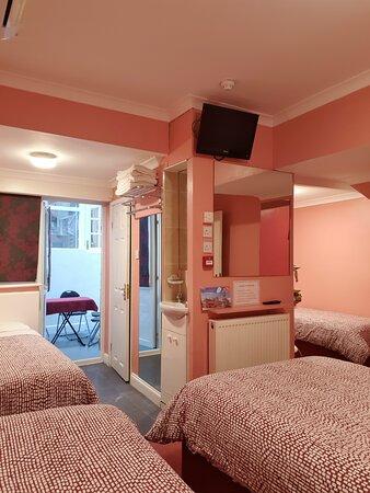 Family room on basement/lower ground floor