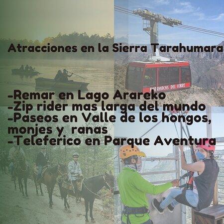 Криль, Мексика: La Sierra Tarahumara esconde oro cultural! Ven a visitarla pronto con tu familia o amigos