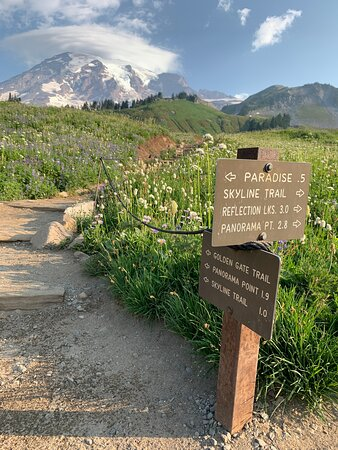 If you have time to do 1 trail in Mt Rainier, this is it!