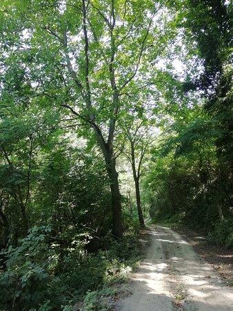 Broni, Italien: Un tratto del percorso 8