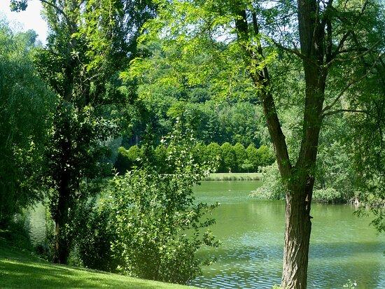 l'autre côté du lac, derrière la petit ile