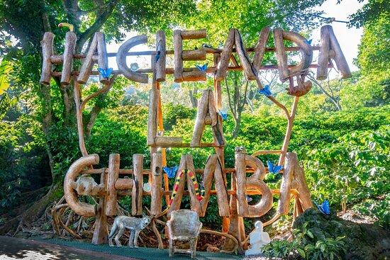 Chimba Experience