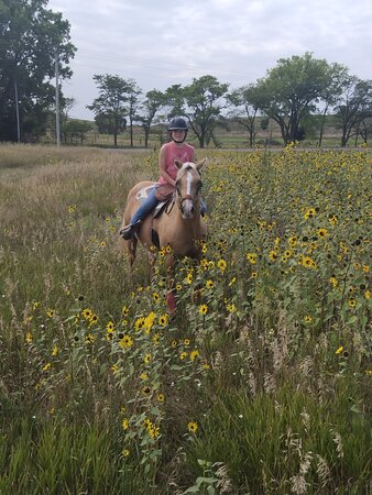 Trail ride at pressey park