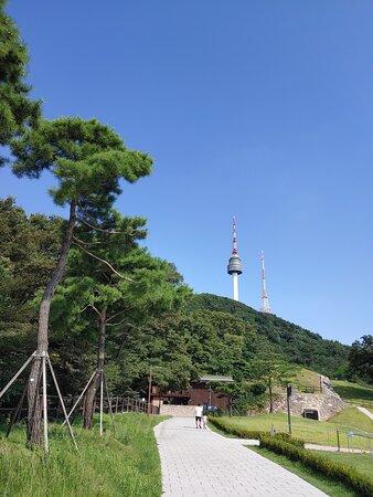 Namsan Park in August