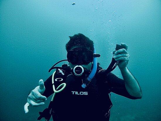 We will always find ourselves in the ocean.  E. E. Cummings.  https://www.facebook.com/BanderasScuba . . . . . . . . . #BanderasScuba #Banderasscubarepublic #PVScuba #PADI #PVPADI #PADI5star #ScubaVallarta #pvscubadiving #PuertoVallarta #BuceoPuertoVallarta #divepv #lovenature #visitpv
