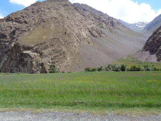 Tayikistán: Ku mojemu osłupieniu w drodze do Khorog napotkaliśmy na rozległą i ukwieconą łąkę . Tu się takiej łąki nie spodziewałem .