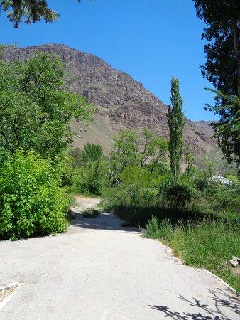 Zieleń ogrodu jest tylko tłem dla okolicznych wysokich gór .