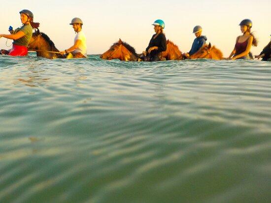 Kokou Horse Riding Center