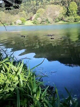 Eymir gölünden görüntüler