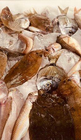 il nostro pescato: fresco e irresistibile