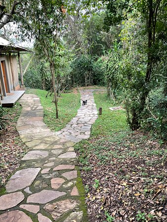 Monkeys were just some of the cute wildlife that share the property.