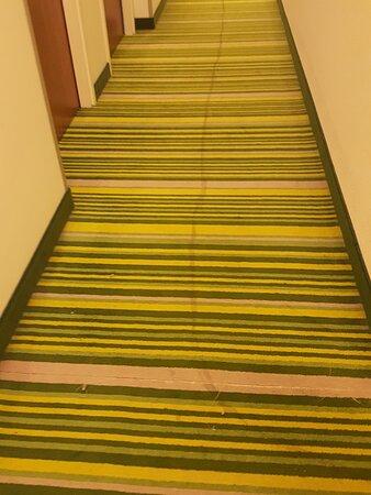 Hallway carpet - unacceptably dirty