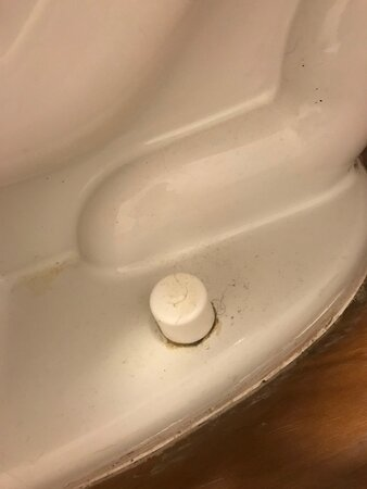 urine and filth around base of toilet