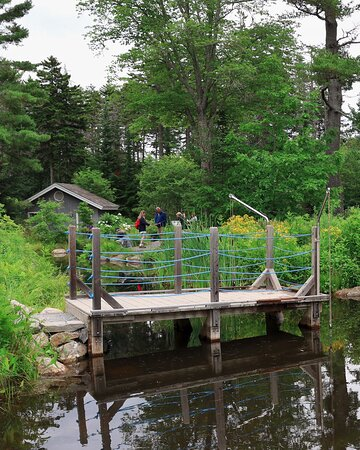 Tripadvisor - This pool is dammed in such a way to appear to be a wall of water, surrounded by lovely plantings.   - תמונה של Coastal Maine Botanical Gardens, בות'ביי