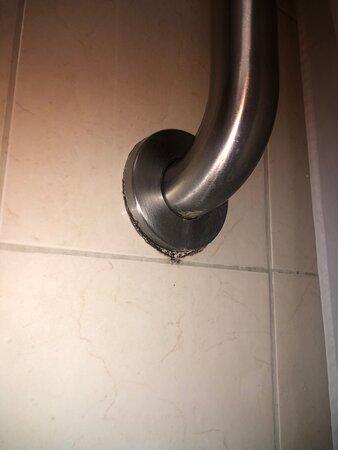 All the mold through our bathroom!