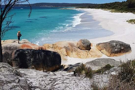 2-Day Tas East Coast Escape Tour including Bay of Fires, Wineglass...