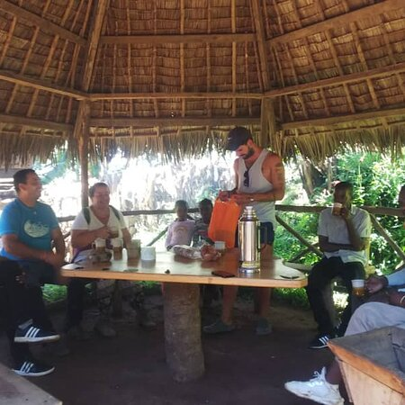 Национальный парк Килиманджаро, Танзания: Coffee bar test of Africa organic coffee
