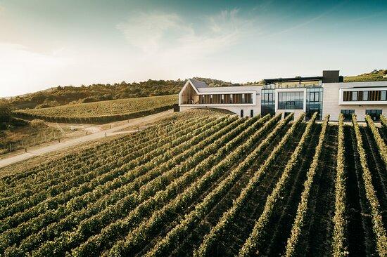 Chlaba, سلوفاكيا: Welcome to Világi Winery. 