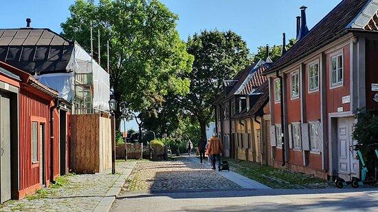 The street and Cornelis Park