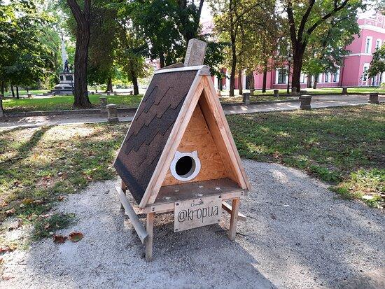 Kropyvnytskyi, Ucraina: Вот такой креативный домик для бездомных котиков. Спасибо вам, ребята, что поставили такое чудо для пушистиков