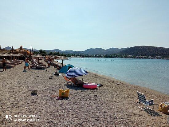 Ανάβυσσος, Ελλάδα: Alopigia, Aug. 2021