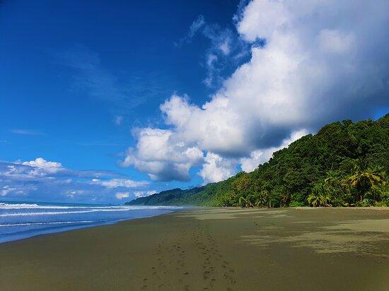 Sandy Beach in Corcovado National Park