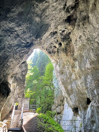 In order to visit this cave, consult the visiting program.