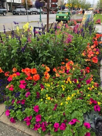 Anchorage Trolley Tour: The downtown is prettied-up with beautiful flowers.