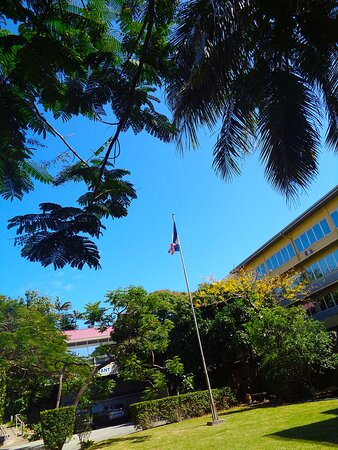 Noumea, New Caledonia: 🌱    Exterior Garden  🌱 ◈🔹   National Veterans Museum  ◈ 🔹 Maréchal Foch Avenue - Nouméa City ▫ ◈