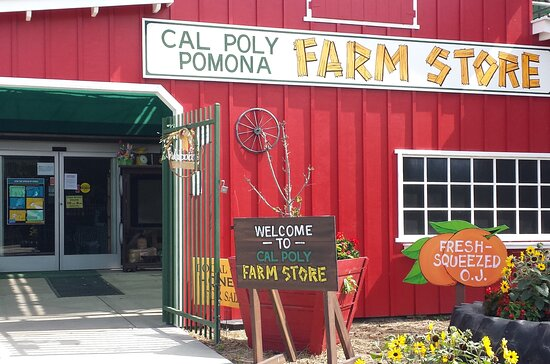 On the Cal Poly campus situated amongst Orange groves and agricultural acres, make you feel your in the Country