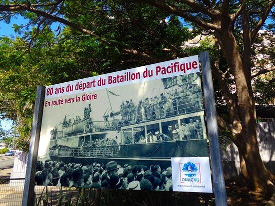 Noumea, Neukaledonien: ╭🌿🔸   Exterior Garden  🔸🌿 ╮ ◈   National Veterans Museum  ◈  Maréchal Foch Avenue - Nouméa City ▫ ◈