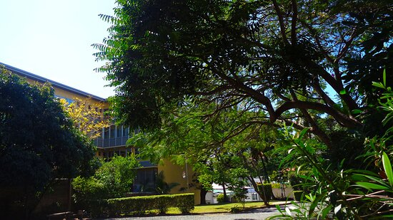 Noumea, Neukaledonien: ╭🌳🔸  Exterior Garden  🔸🌳 ╮ Veterans Memorial  Museum ▫ ◈  Nouméa City