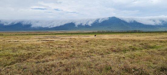 Ngorongoro wonderful landscape