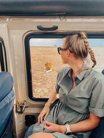 5days Tarangire,Serengeti,ngorongoro Crater and Lake Manyara National park: .